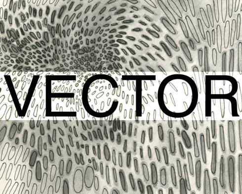 fieldvector.jpg